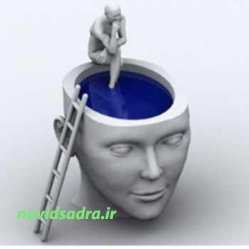 هوش درون فردی
